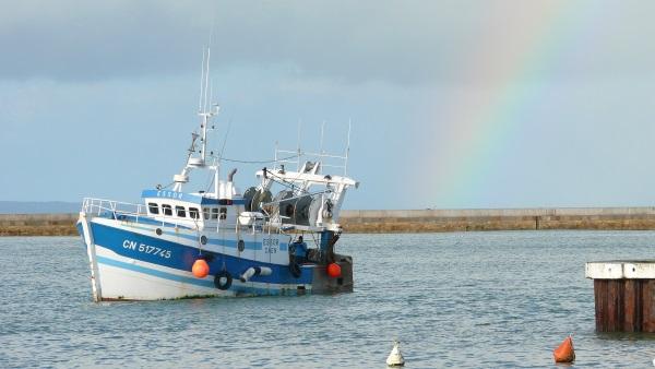 Bateau de pêche dans la baie de Port en Bessin - CALVADOS-TOURISME-LIBRE